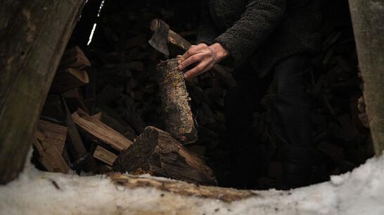 Житель Воронежской области нарубил дров на 870 тыс рублей