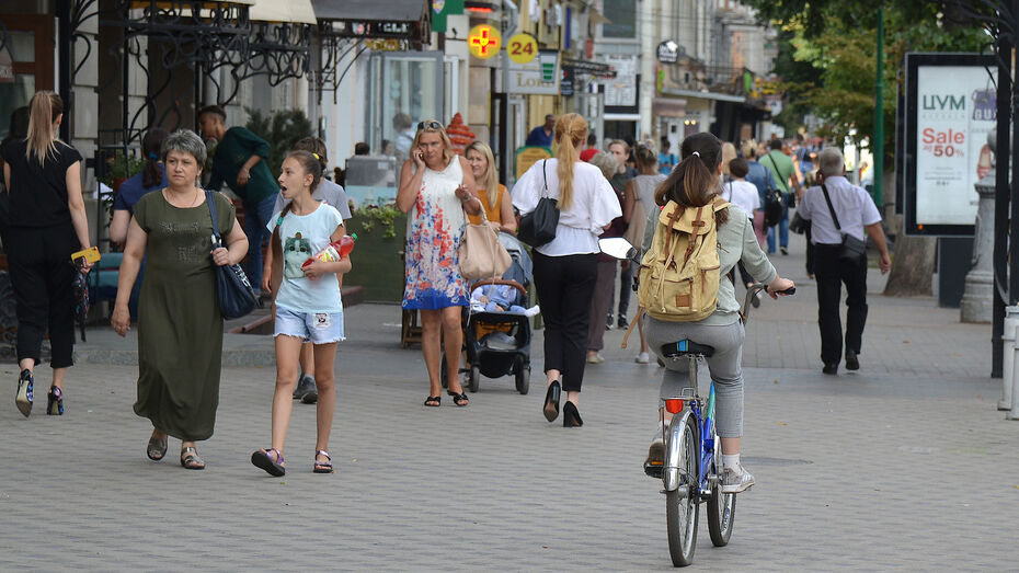 С воронежцами обсудят пешеходные маршруты и проблемы безбарьерной среды для инвалидов