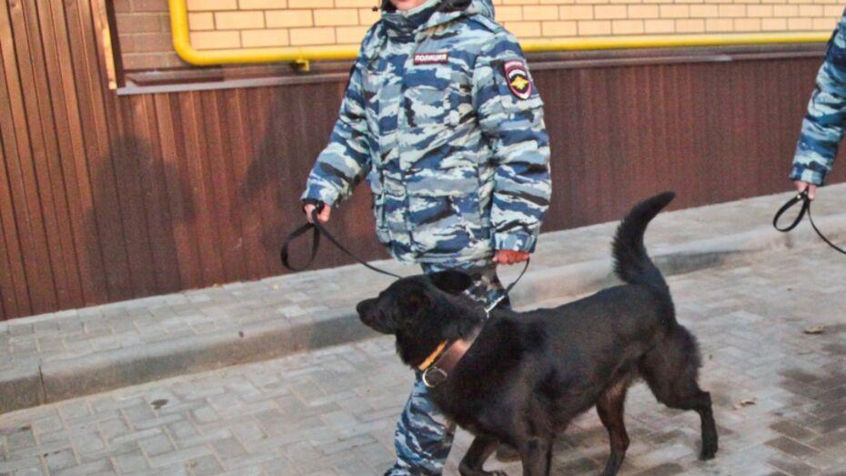 В Воронеже служебная собака нашла у рецидивиста оружие и наркотики