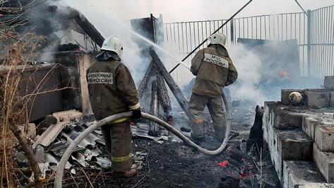 Природные пожары уничтожили 28 домов за выходные в Воронежской области