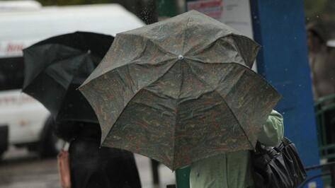 Спасатели предупредили о сильном дожде и ветре в Воронежской области