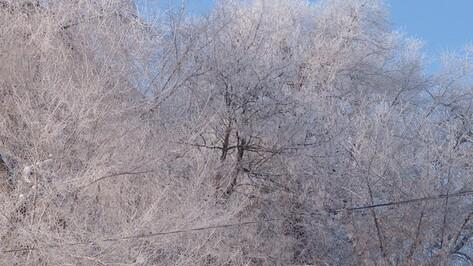 Снегопад оставил без света жителей пяти районов Воронежской области