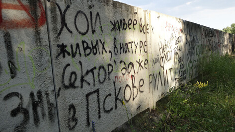 В соцсетях выступили «за» установку памятника воронежскому лидеру «Сектора газа»