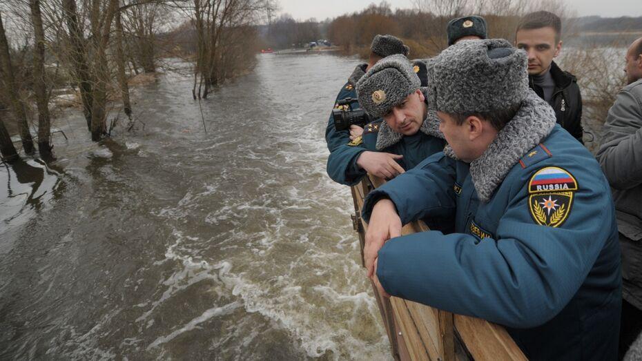 Под угрозой подтопления оказались 117 участков в Воронеже