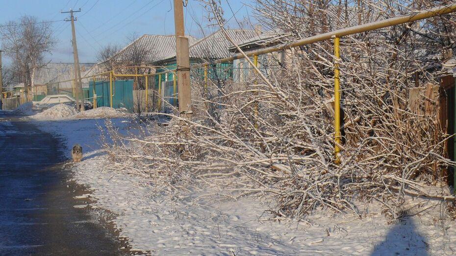 В Верхнемамонском районе после двух недель тепла выпал снег