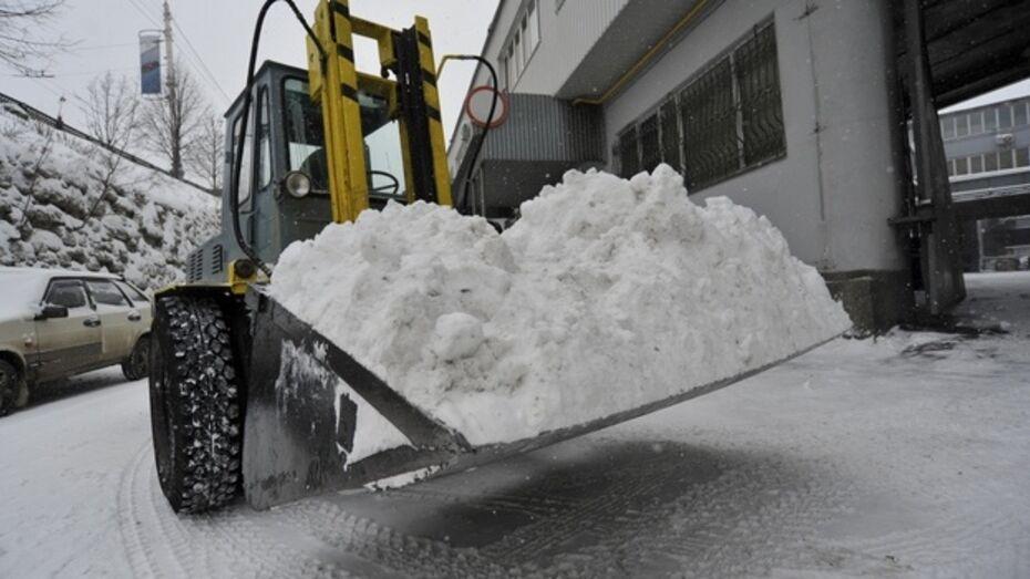 Губернатор велел подсчитать, сколько бюджетных средств удалось сэкономить из-за малоснежной зимы