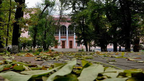 Воронежский Никитинский театр начал поиск помещения для филиала