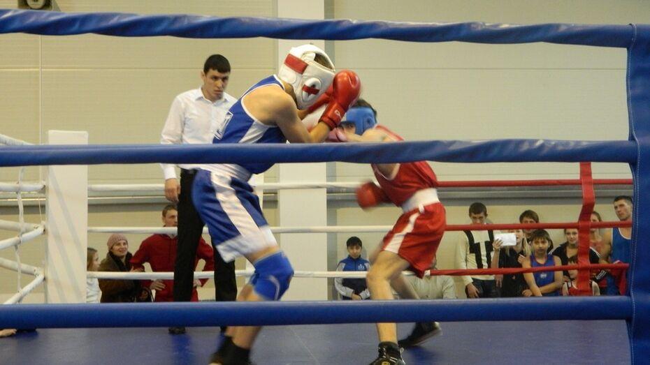 В Богучаре впервые прошло открытое первенство местной ДЮСШ по боксу