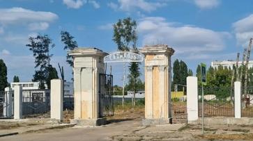 В парке завода имени Тельмана в Воронеже на месте вырубленных деревьев разобьют газон