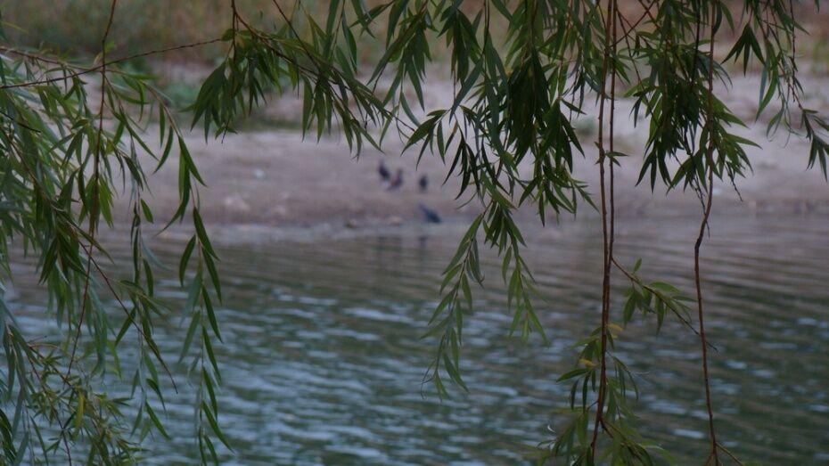Под Воронежем утонула 30-летняя женщина