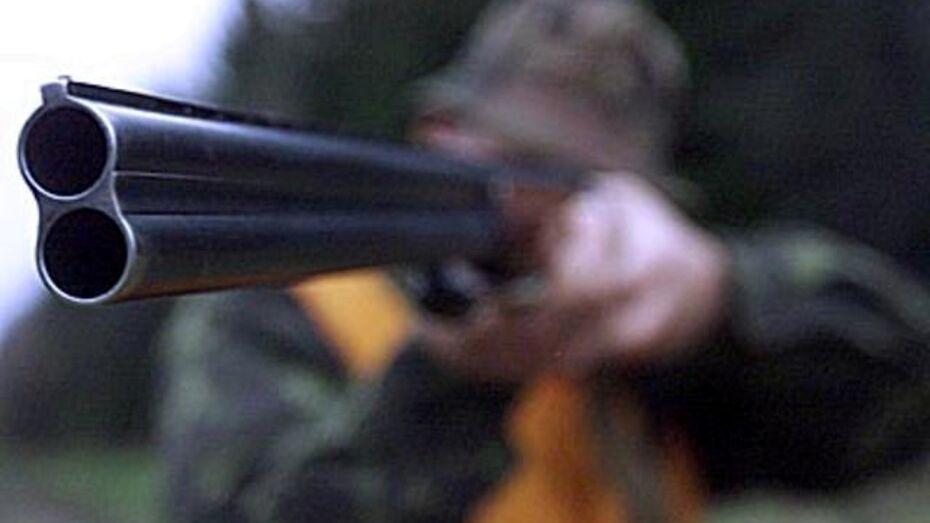 Подгоренские браконьеры уничтожают посевы