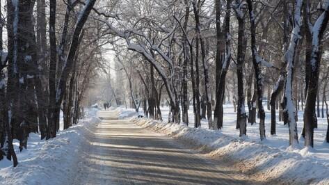 Выходные в Воронеже будут сухими и прохладными