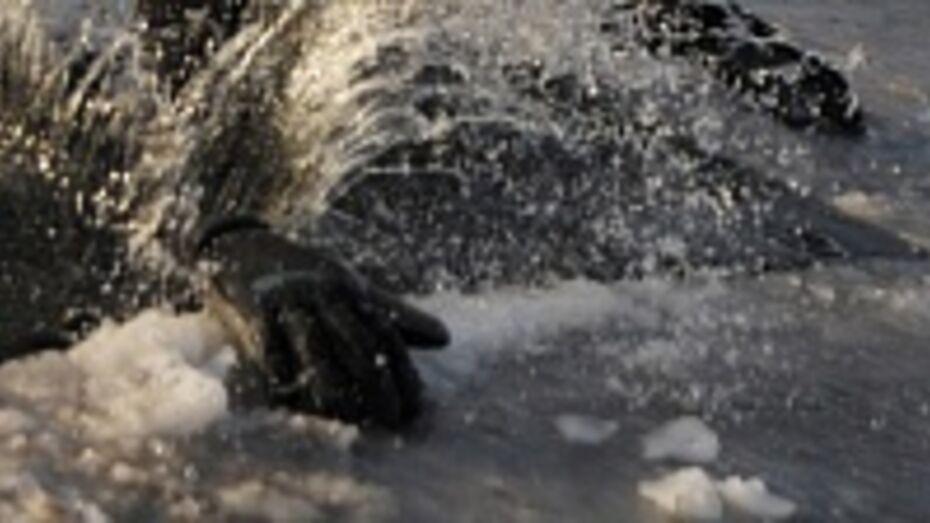 На водоемах Воронежской области из-за выхода на лед пострадало уже три человека