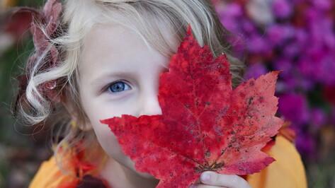 Пособия на детей от 3 до 7 лет получают 48,6 тыс воронежских семей