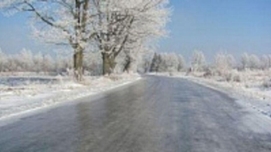 В Воронежской области 14 января ожидается мокрый снег и гололед