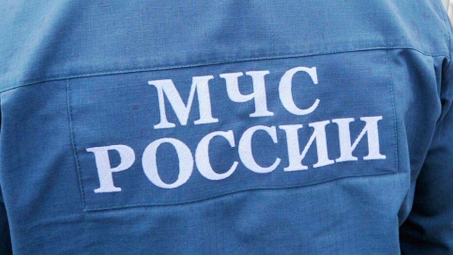 В Воронежской области утонула 8-летняя девочка