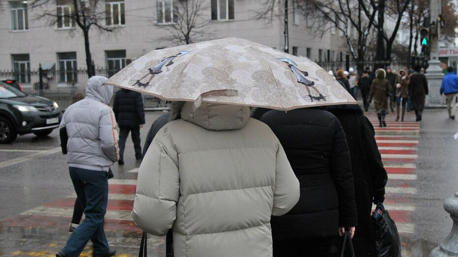 Дождь испортит воронежцам субботу