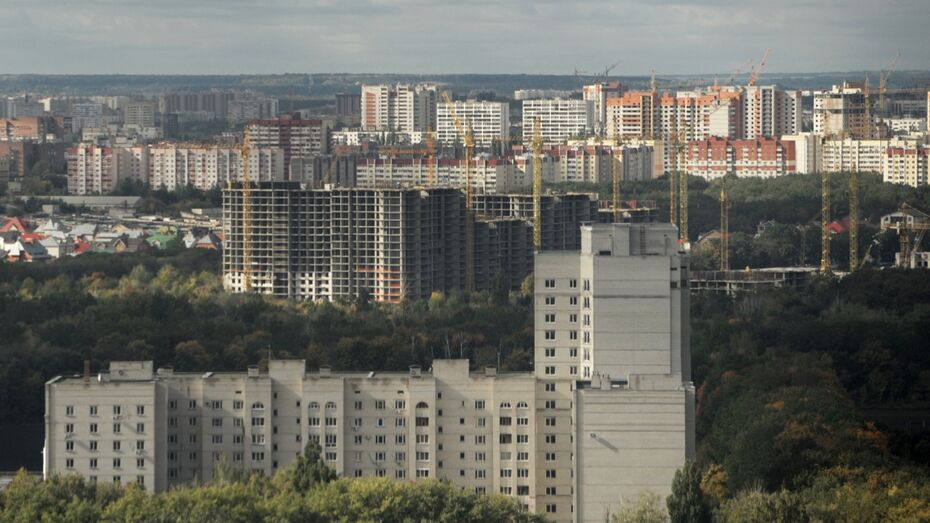 Власти предложили разбить Воронеж на архитектурные зоны