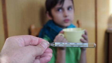 Заболеваемость гриппом и ОРВИ в Воронежской области упала на 10% за неделю
