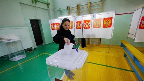 «ЕР» получила 74,8% после обработки 40% бюллетеней на выборах в Воронежскую облдуму