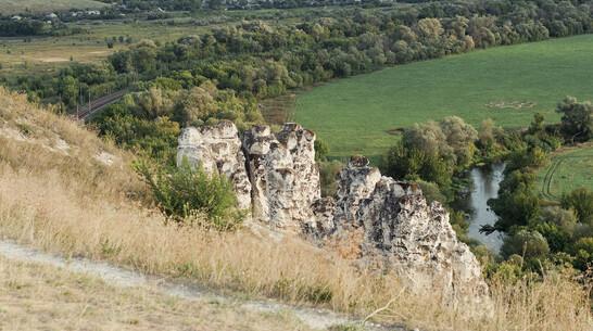 На холмах воронежского Дивногорья развернут огромный триколор