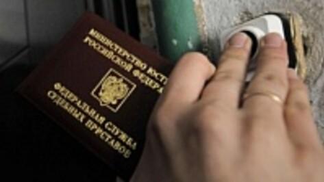 Нижнедевицкие приставы арестовали у неплательщика бензопилу, музыкальный центр и телевизор