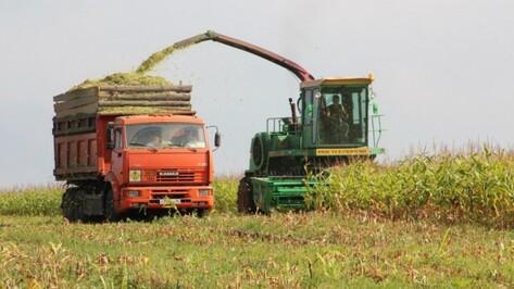 Воронежская область оценила в 3,5 млрд рублей аграрные инвестпроекты в 2017 году