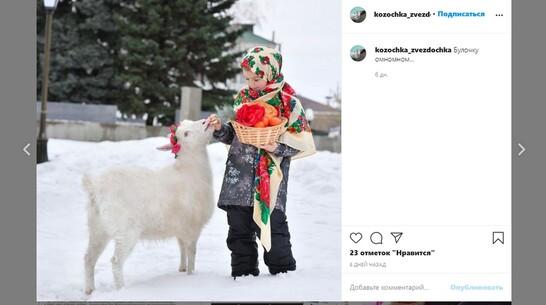 У козы из Воронежской области появилась своя страница в Instagram