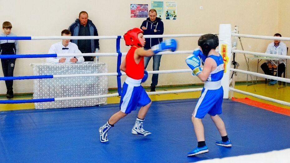 В Грибановке пройдут открытые районные соревнования по боксу