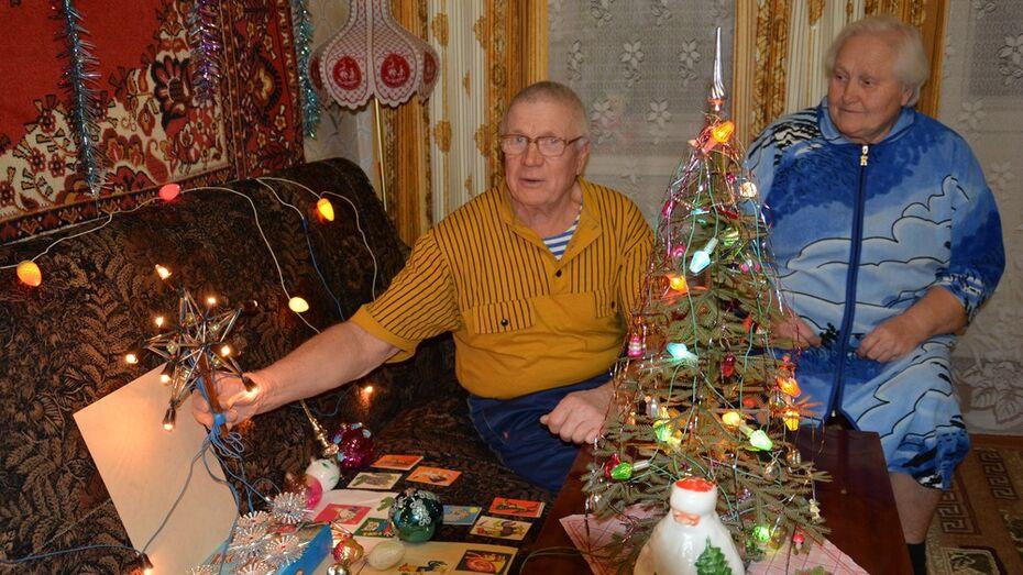Бывший энергетик из Поворино собрал раритетные новогодние гирлянды