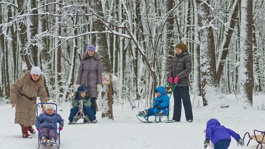 В Воронеж придут потепление и снегопады