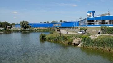 Руководство «Воронежсахар» создаст в Грибановке зеленые зоны