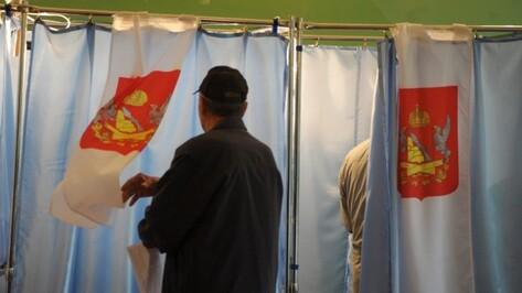 Проголосовать на выборах по месту пребывания пожелали 5 тыс жителей Воронежской области