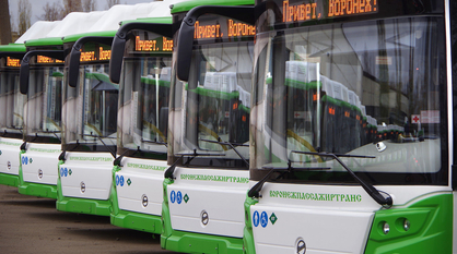 Авторы новой маршрутной сети в Воронеже займутся улучшением транспорта в области