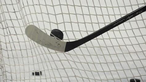 Хоккейная «Россошь» победила «СКА-Варягов» в повторном матче