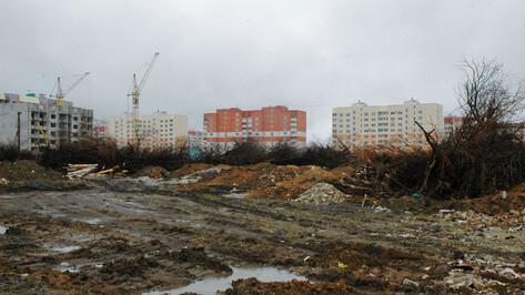 Стройфирма «Выбор» попросила Верховный суд вернуть ей 27 га яблоневого сада в Воронеже