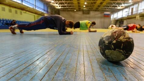 Воронежские власти пообещали помощь гандбольной «Энергии»