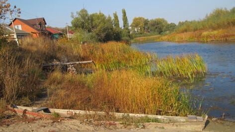 Уровень воды в воронежском Битюге впервые за 92 года достиг исторического минимума