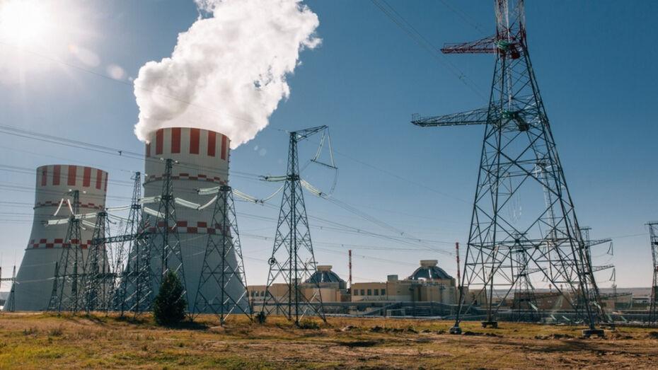 Энергоблок №6 Нововоронежской АЭС включили в сеть после завершения ППР