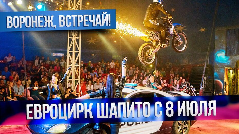 Воронежцы раскупили билеты в «Евро Цирк» после первого  же  представления