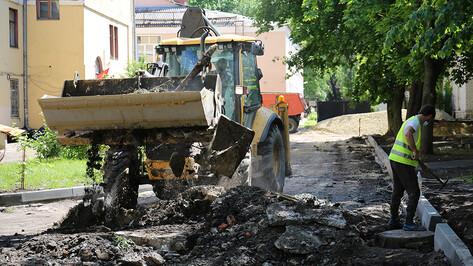 Мэр Воронежа проверил, как идут работы по благоустройству дворов