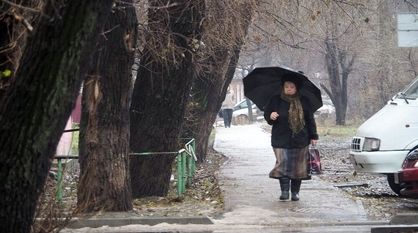 Последние выходные осени в Воронеже будут дождливыми