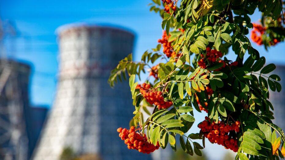 Нововоронежская АЭС перевыполнила план октября по выработке электроэнергии