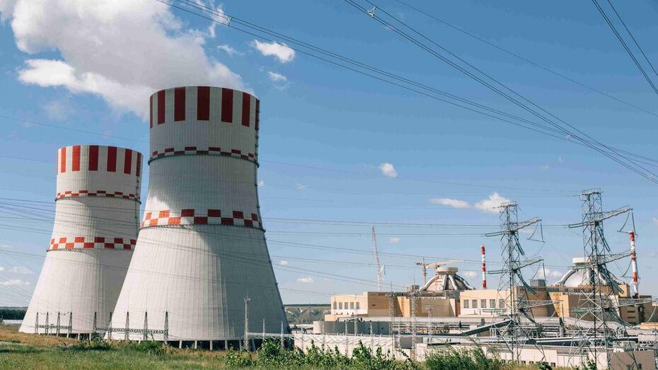 На Нововоронежской АЭС рассказали о преимуществах автоматизированных систем контроля