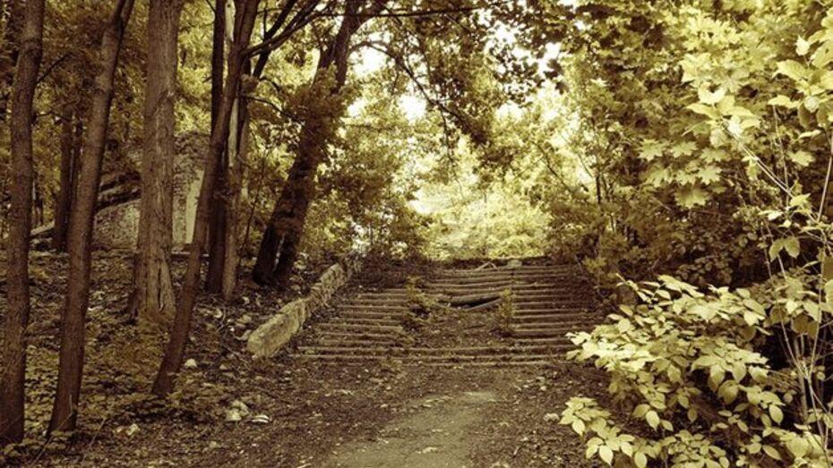 Парком «Динамо» займутся в начале 2013 года