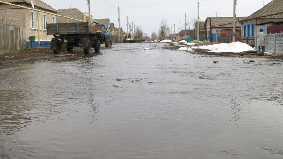 Окраину  Репьевки  затопило  потоками  талой  воды