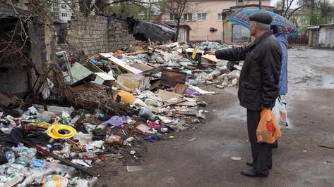 В Воронеже открыли горячую линию для жалоб на мусорные завалы