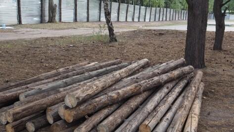 Губернатор поручил снести незаконное ограждение в воронежском парке «Северный лес»