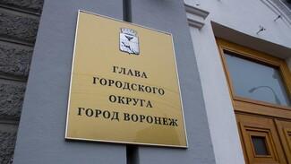 Мэрия подберет руководителя «Воронежтеплосети» и куратора жилфонда за 10 дней
