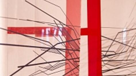 В галерее «Х.Л.А.М.» стеклянный Воронеж разделили нарисованными границами